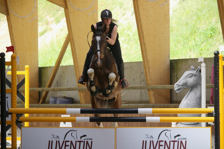 Cavalière et cheval en saut d'obstacle durant un cours d'équitation
