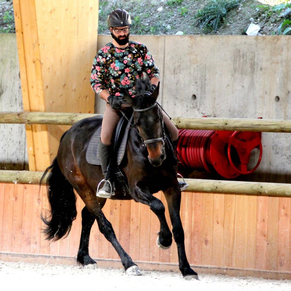 Cavalier en exercice de dressage dans le manège du centre équestre en Savoie près de Chambéry