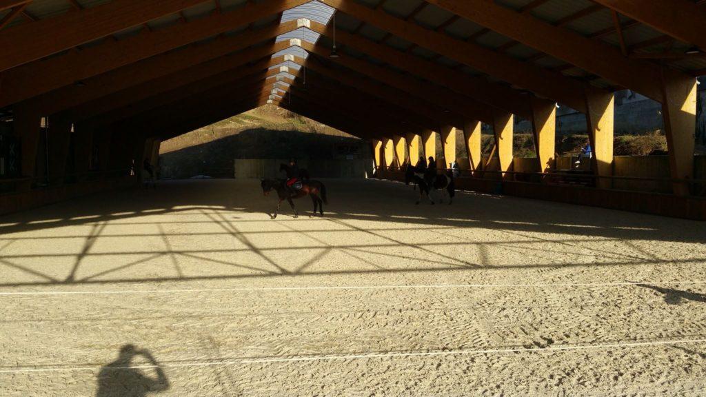 Pension pour cheval Chambéry, Grenoble et Albertville.